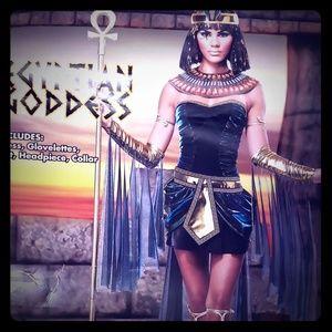 Egyptian costume, NWT 💃